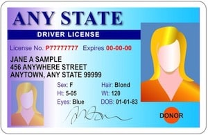 DRIVERS LICENSE, I.D Cards etc